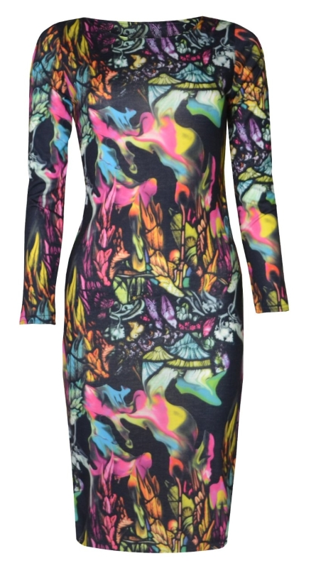 Birds and Feathers Print Long Sleeved Midi Dress