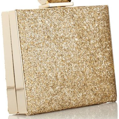 Halston Heritage Box PET Minaudiere Evening Bag